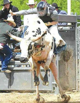 rodeo johnson