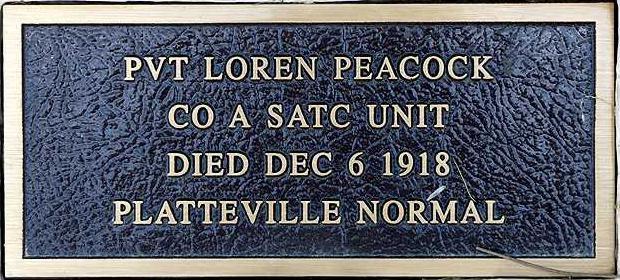 UWP tree Peacock plaque