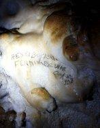 Kickapoo Caverns